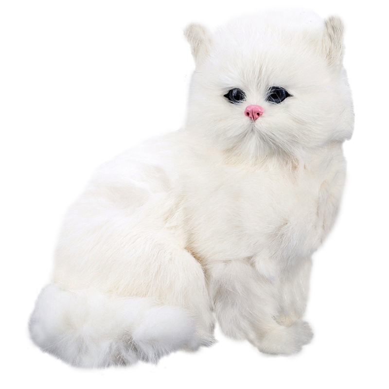 White Persian Cats Toys