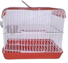 Birds Carrying Cage China